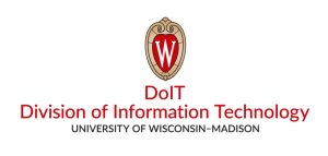 DoIT Division of Information Technology logo